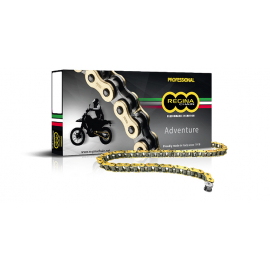 REGINA 525 X 120 ZRE GOLD Z-RING CHAIN